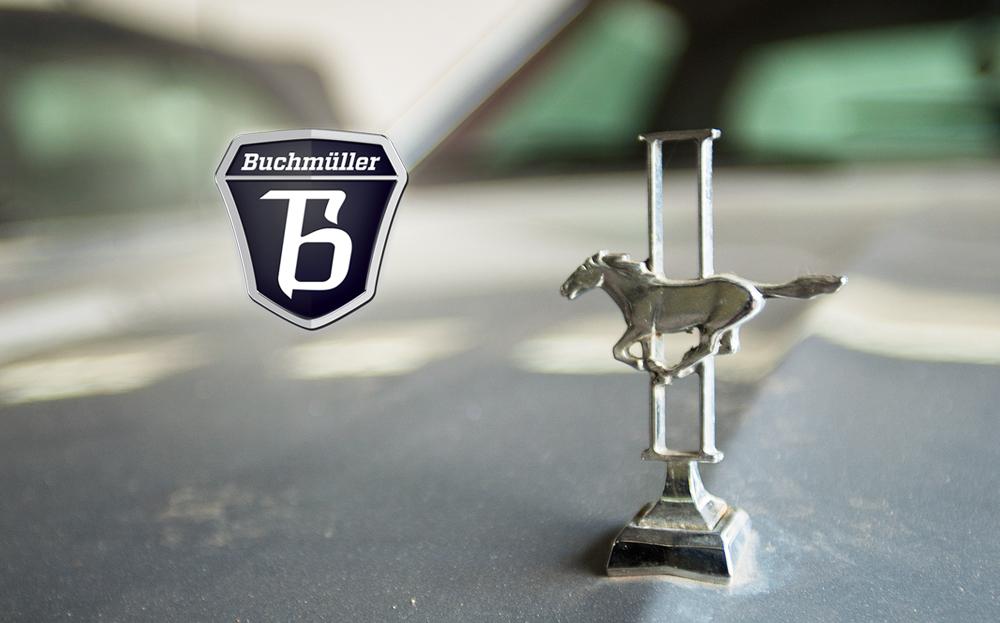 Buchmueller01