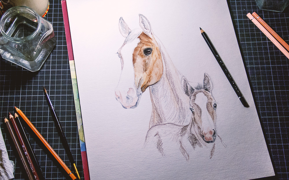 WP-Salmiac-Content-970px-Horseportraits-000